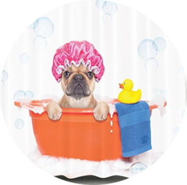 Dog & Puppy Shampoo
