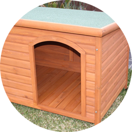 Plastic & Wooden Dog Kennels