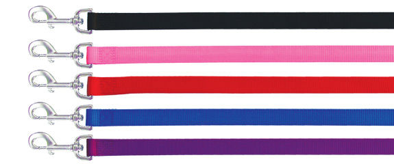 Beau Pet Lead Nylon Neoprene 25mm x 120cm