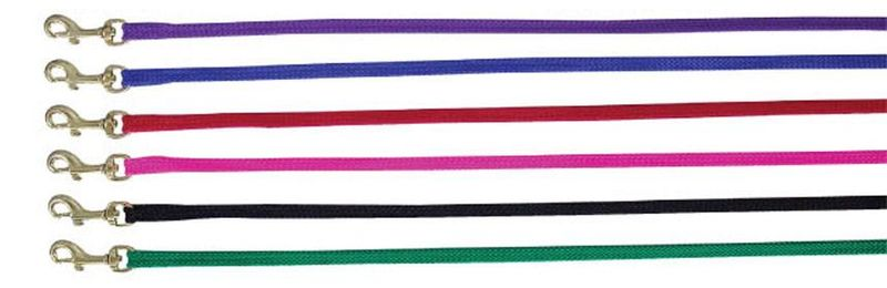 Beau Pet Nylon Lead 20mm x 120cm