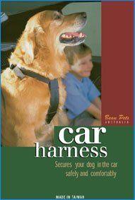 Car Harness xlarge