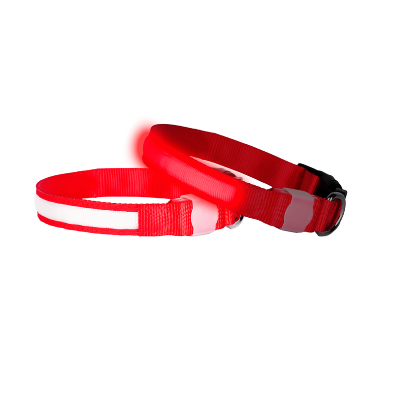 Doglite Red Nite small 33 43cm