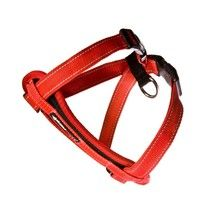 Ezy Dog Chest Harness Red medium