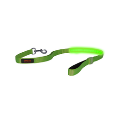 Doglite Lead Green Glow medium 135cm
