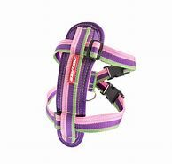 Ezy Dog Chest Plate Harness Bubblegum small