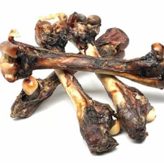 Kangaroo Bones