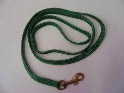 Puppy Lead Green