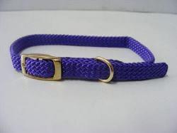 Puppy Collar Nylon Purple