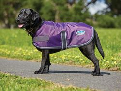 Weatherbetta Windbreaker 420D Purple/Black 50cm